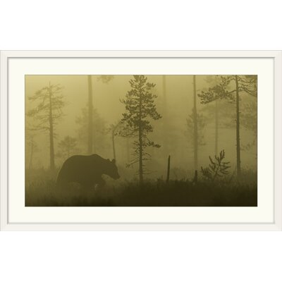 """'Morning Fog' by Svein Ove Linde Photographic Print Format: White Frame, Size: 22"""" H x 35"""" W x 1"""" D 2355784_21_30x17_none"""