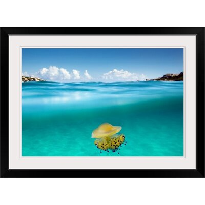 """'The Dangerous Encounter' by Roberto Sysa Moiola Photographic Print Format: Black Frame, Size: 17"""" H x 23"""" W x 1"""" D 2357336_15_18x12_none"""