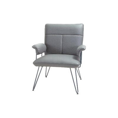 Lewisvielle Arm Chair Upholstery: Grey / Grey