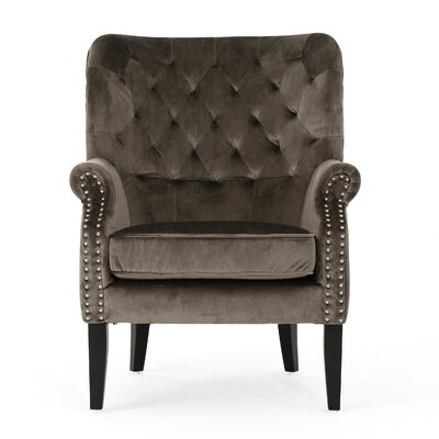 Anamaria New Velvet Wingback Chair Color: Gray