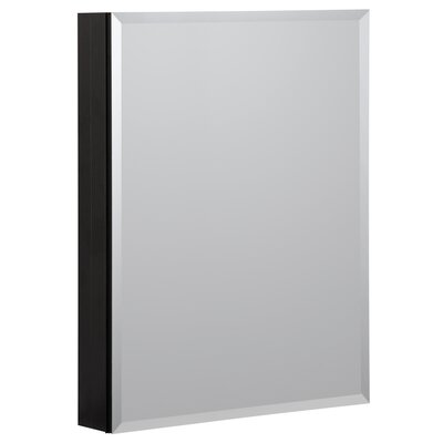 19 x 30 Recessed or Surface Mount Medicine Cabinet Finish: Black