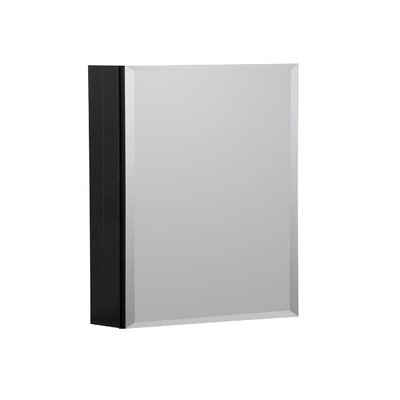 16 x 20 Recessed or Surface Mount Medicine Cabinet Finish: Black