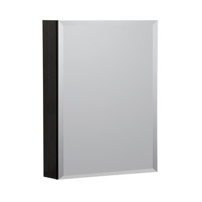 20 x 26 Recessed or Surface Mount Medicine Cabinet Finish: Black