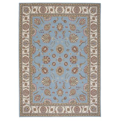 Cheap Renningers Area Rug Rug Size 5 3 x 7 3  for sale