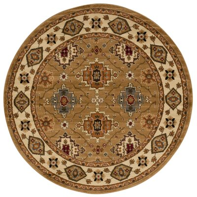 Seymour Gold Area Rug Rug Size: Round 53