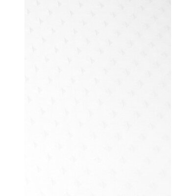 Dexter Shower Curtain Color: White
