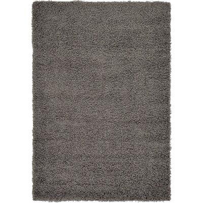 Lilah Dark Gray Area Rug Rug Size: 4 x 6