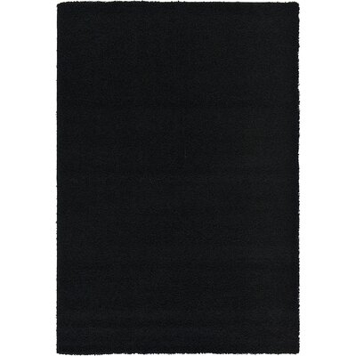 Lilah Black Area Rug Rug Size: 6' x 9'