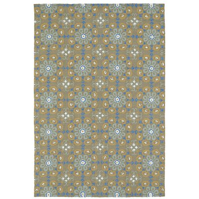 Cavour Handmade Brown Indoor / Outdoor Brown Area Rug Rug Size: Rectangle 4 x 6