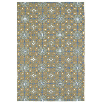 Cavour Handmade Brown Indoor / Outdoor Brown Area Rug Rug Size: 8 x 10