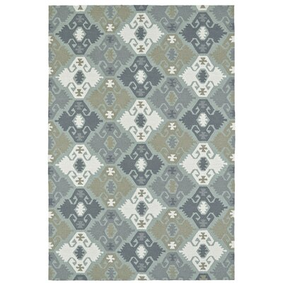 Cavour Traditional Handmade Pewter Green Indoor / Outdoor Area Rug Rug Size: Rectangle 10 x 14