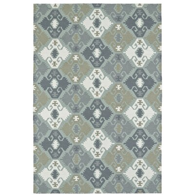 Cavour Traditional Handmade Pewter Green Indoor / Outdoor Area Rug Rug Size: 4 x 6