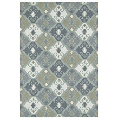 Cavour Traditional Handmade Pewter Green Indoor / Outdoor Area Rug Rug Size: Rectangle 5 x 76