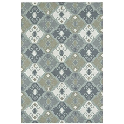 Cavour Traditional Handmade Pewter Green Indoor / Outdoor Area Rug Rug Size: Rectangle 9 x 12