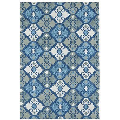 Cavour Handmade Blue Indoor / Outdoor Area Rug Rug Size: Rectangle 8 x 10