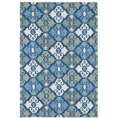 Cavour Handmade Blue Indoor / Outdoor Area Rug Rug Size: Rectangle 9 x 12