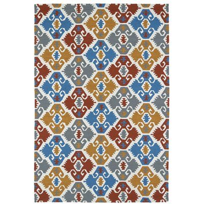Cavour Handmade Multi Indoor / Outdoor Area Rug Rug Size: Rectangle 4 x 6