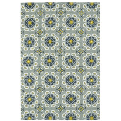 Cavour Handmade Pewter Green Indoor / Outdoor Area Rug Rug Size: Rectangle 5 x 76