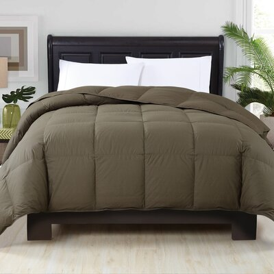 Corduff Down Alternative Comforter Color: Grape Leaf, Size: Full/Queen