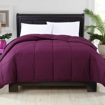 Corduff Down Alternative Comforter Color: Plum, Size: Twin XL