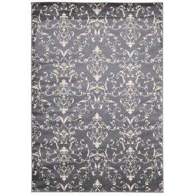 Miriam Dark Gray / Beige Area Rug Rug Size: 53 x 73