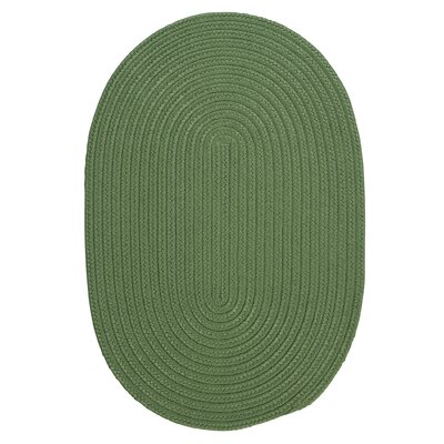 Mcintyre Moss Green Indoor/Outdoor Area Rug Rug Size: Oval 2 x 4