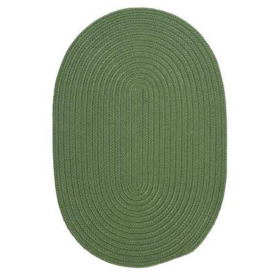 Mcintyre Moss Green Indoor/Outdoor Area Rug Rug Size: Oval 2 x 4