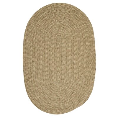 Hale Celery Check Indoor/Outdoor Area Rug Rug Size: Oval 2 x 4