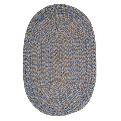 Ridley Blue Ice Check Indoor/Outdoor Area Rug Rug Size: Oval Runner 2 x 6