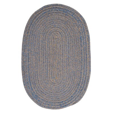 Ridley Blue Ice Check Indoor/Outdoor Area Rug Rug Size: Oval 12 x 15