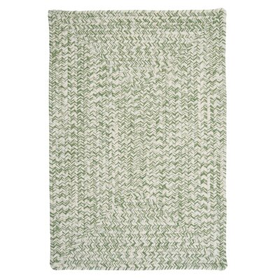 Rockland Greenery Indoor / Outdoor Area Rug