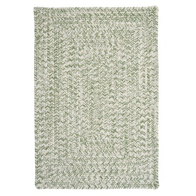 Rockland Greenery Indoor / Outdoor Area Rug Rug Size: 8 x 11