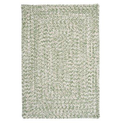 Hawkins Greenery Indoor / Outdoor Area Rug Rug Size: 5 x 8