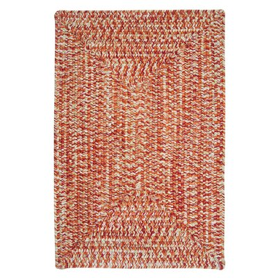 Hawkins Fireball Indoor/Outdoor Area Rug Rug Size: Rectangle 8 x 11