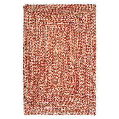 Rockland Fireball Indoor/Outdoor Area Rug Rug Size: 4 x 6