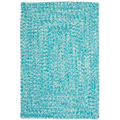 Rockland Turquoise Indoor/Outdoor Area Rug