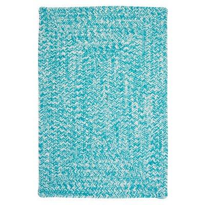 Hawkins Turquoise Indoor/Outdoor Area Rug Rug Size: 10 x 13