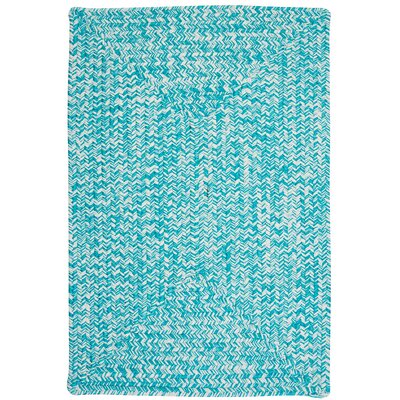Rockland Turquoise Indoor/Outdoor Area Rug Rug Size: 2 x 3