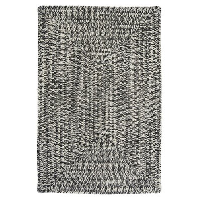 Hawkins Blacktop Indoor/Outdoor Area Rug Rug Size: Rectangle 4 x 6