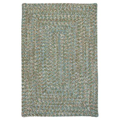 Beltran Seagrass Braided Area Rug Rug Size: Square 6