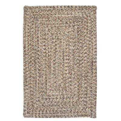 Beltran Gray Rug Rug Size: 8 x 11