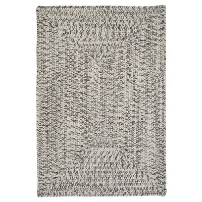 Beltran Silver Shimmer Braided Area Rug Rug Size: Rectangle 2 x 4
