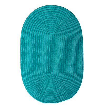 Rainsburg Turquoise Outdoor Area Rug Rug Size: Oval 4' x 6'
