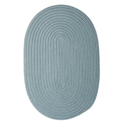 Mcintyre Blue Outdoor Area Rug Rug Size: Oval 2 x 4