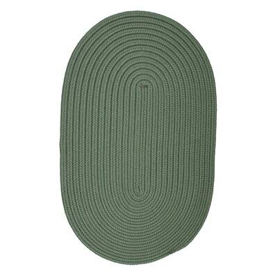 Rainsburg Myrtle Green Indoor/Outdoor Area Rug Rug Size: Oval 7 x 9