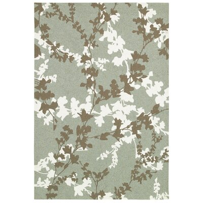 Mccall Willow Branch Hand-Woven Sage Indoor/Outdoor Area Rug Rug Size: Rectangle 8 x 11