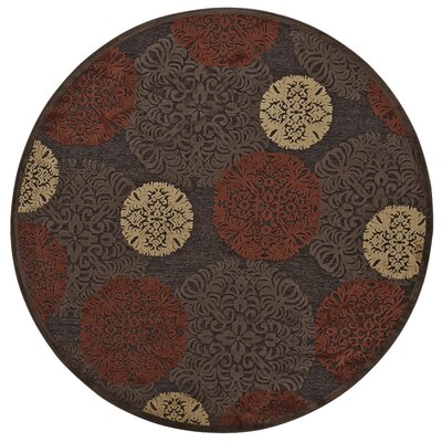 Cherine Dark Chocolate Area Rug Rug Size: Round 76