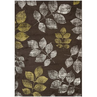 Rosario Brown/Green Loomed Area Rug Rug Size: Rectangle 67 x 96
