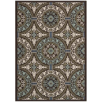 Tierney Brown Indoor/Outdoor Area Rug Rug Size: 53 x 77