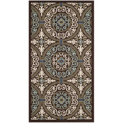 Tierney Chocolate/Cream Indoor/Outdoor Area Rug Rug Size: Runner 27 x 5
